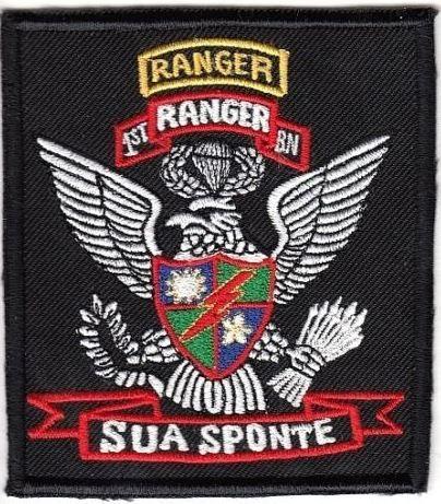 Vietnam Us Army Ranger 75th Infantry Regiment Airborne 1st Battalion