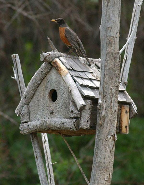 35 beautiful birdhouse design ideas - Birdhouse Design Ideas