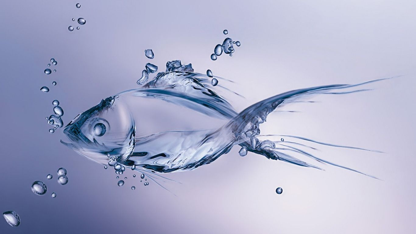 3d Water Fish Wallpapercase Water Art Fish Wallpaper Moving Wallpapers