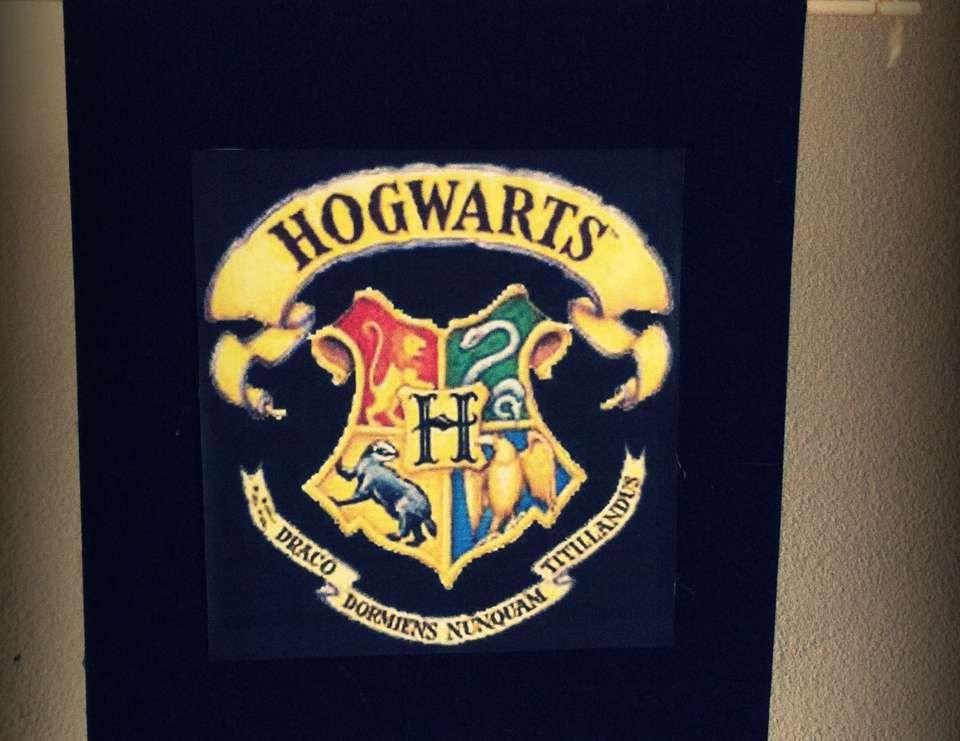 Samantha's Harry Potter Birthday