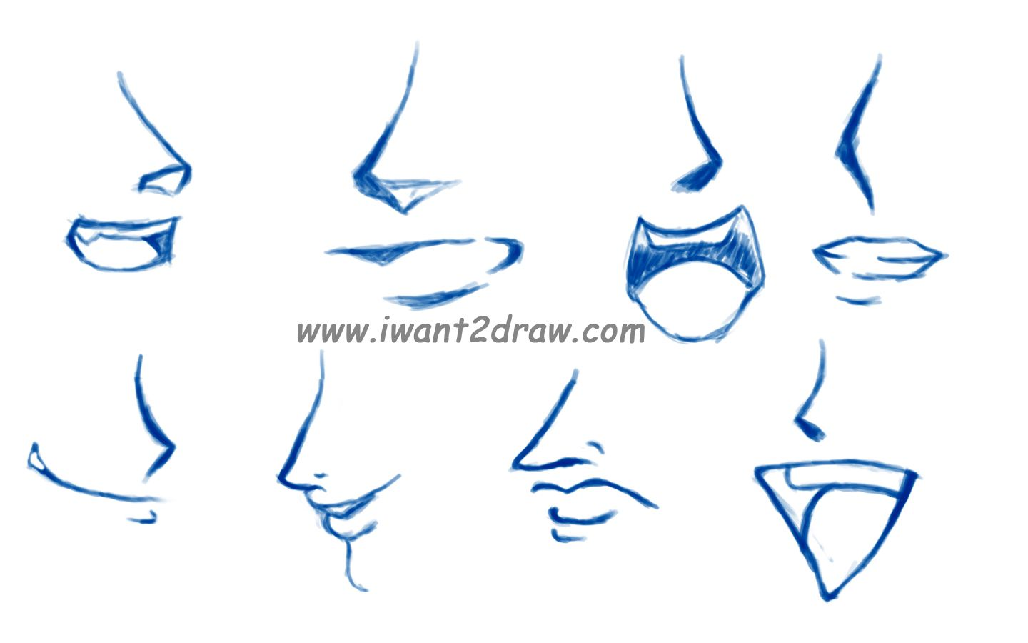 How To Draw Anime How To Draw Anime Noses Lips Drawing Nose Drawing Anime Mouth Drawing