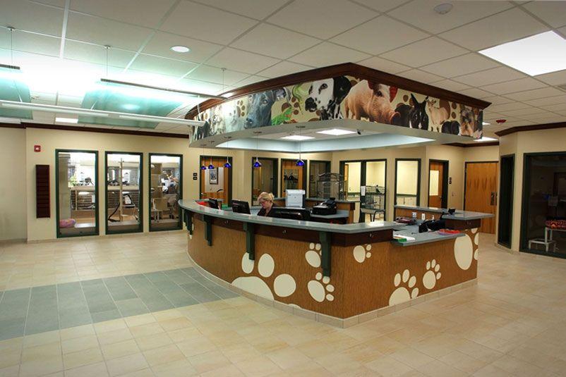 Love The Graphics Adoption Center Home Home Decor