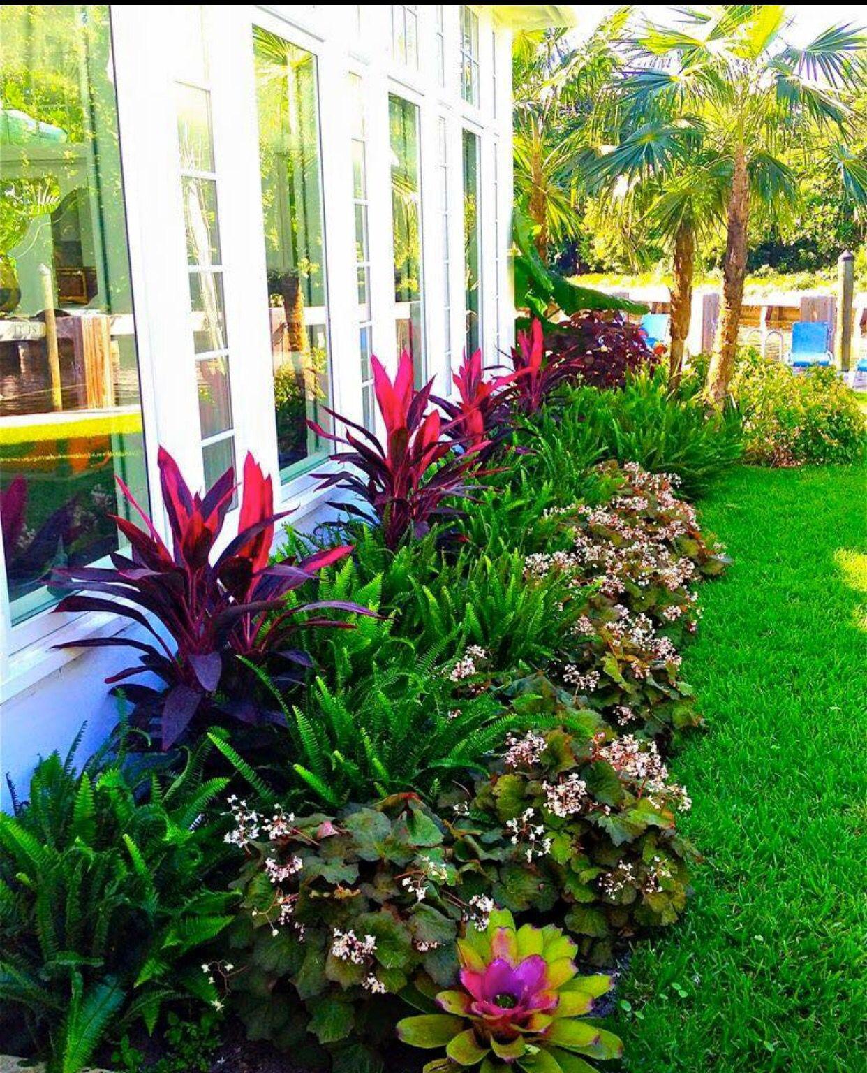 Elegant Tropischer Garten, Garten Ideen, Garten Gestalten, Gartenpflanzen, Blühende  Hecke, Landschaftsbau Ideen, Balkon Pflanzen, Blumenvase, Blumenbeete
