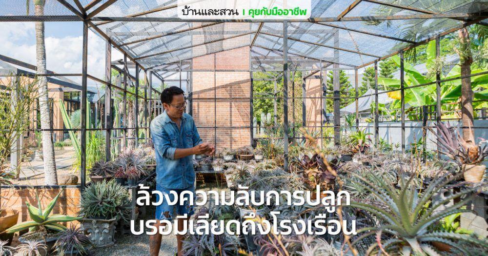 ปองโย Pong Yo ร านขายต นไม ท บรรยากาศด เหม อนอย ต างประเทศ บ านและสวน ในป 2021 สวนป า สวนขนาดเล ก แบบสวน