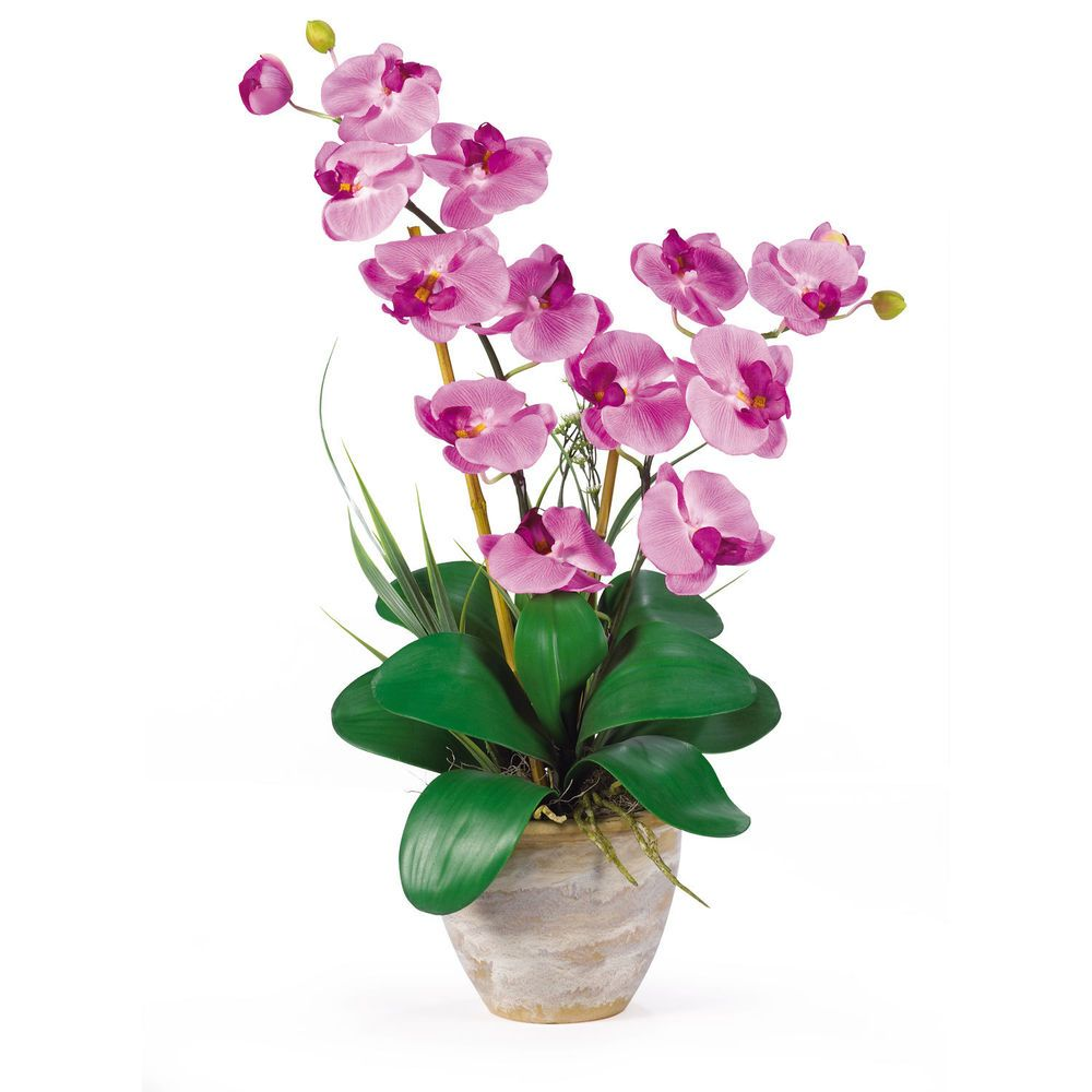Nearly natural double stem phalaenopsis silk orchid arrangement in