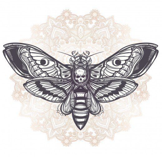 Photo of Butterfly Tattoo Meanings and Design Ideas | TatRing