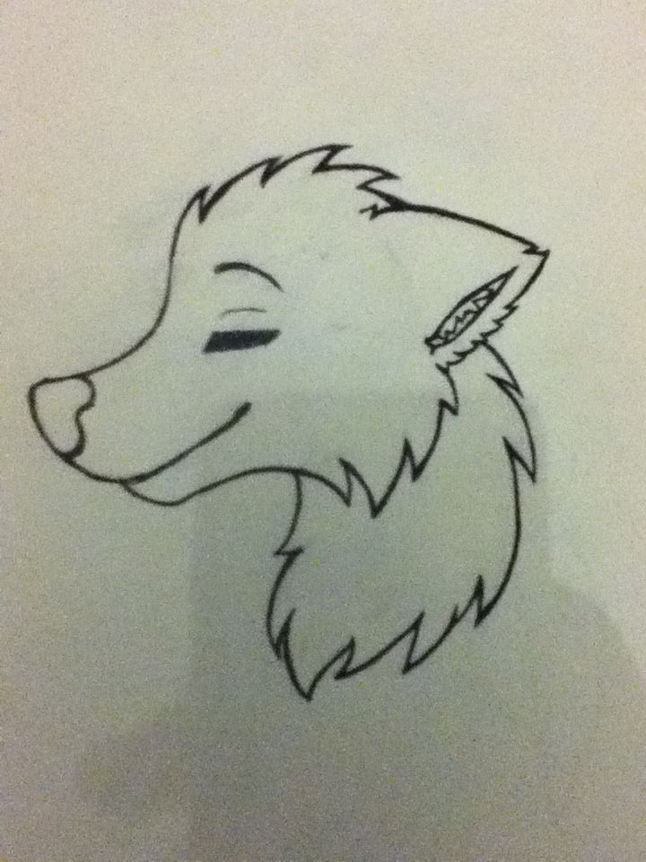 Simple Line Drawings Of Animals : Simple wolf drawing art that i did