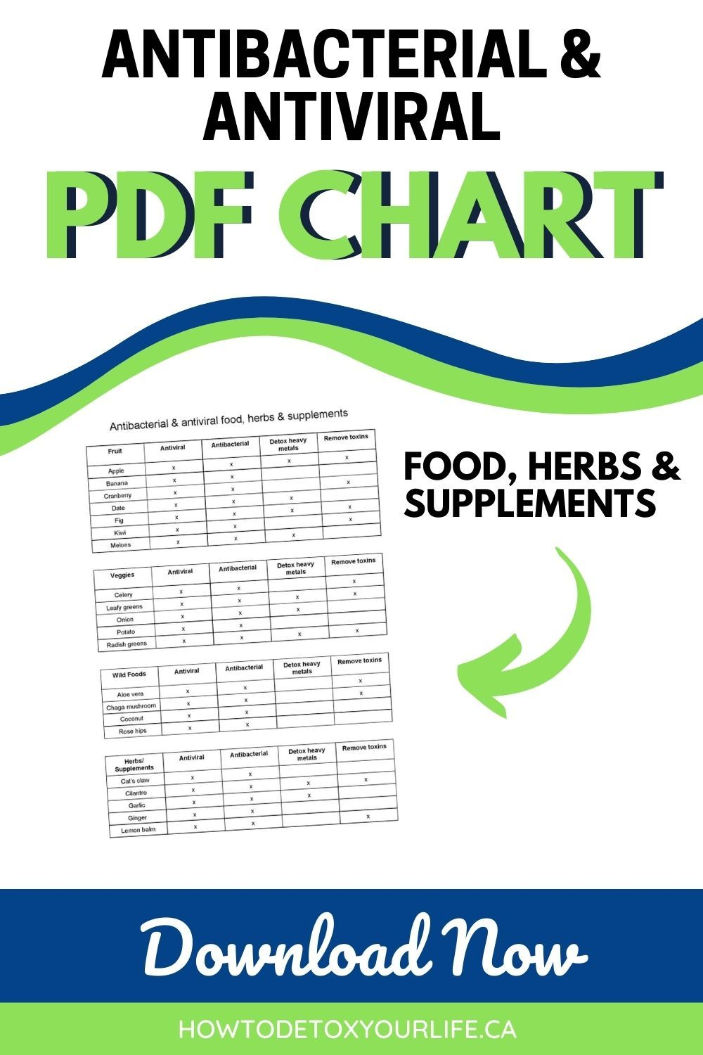 Antiviral and antibacterial food herbs and supplements in