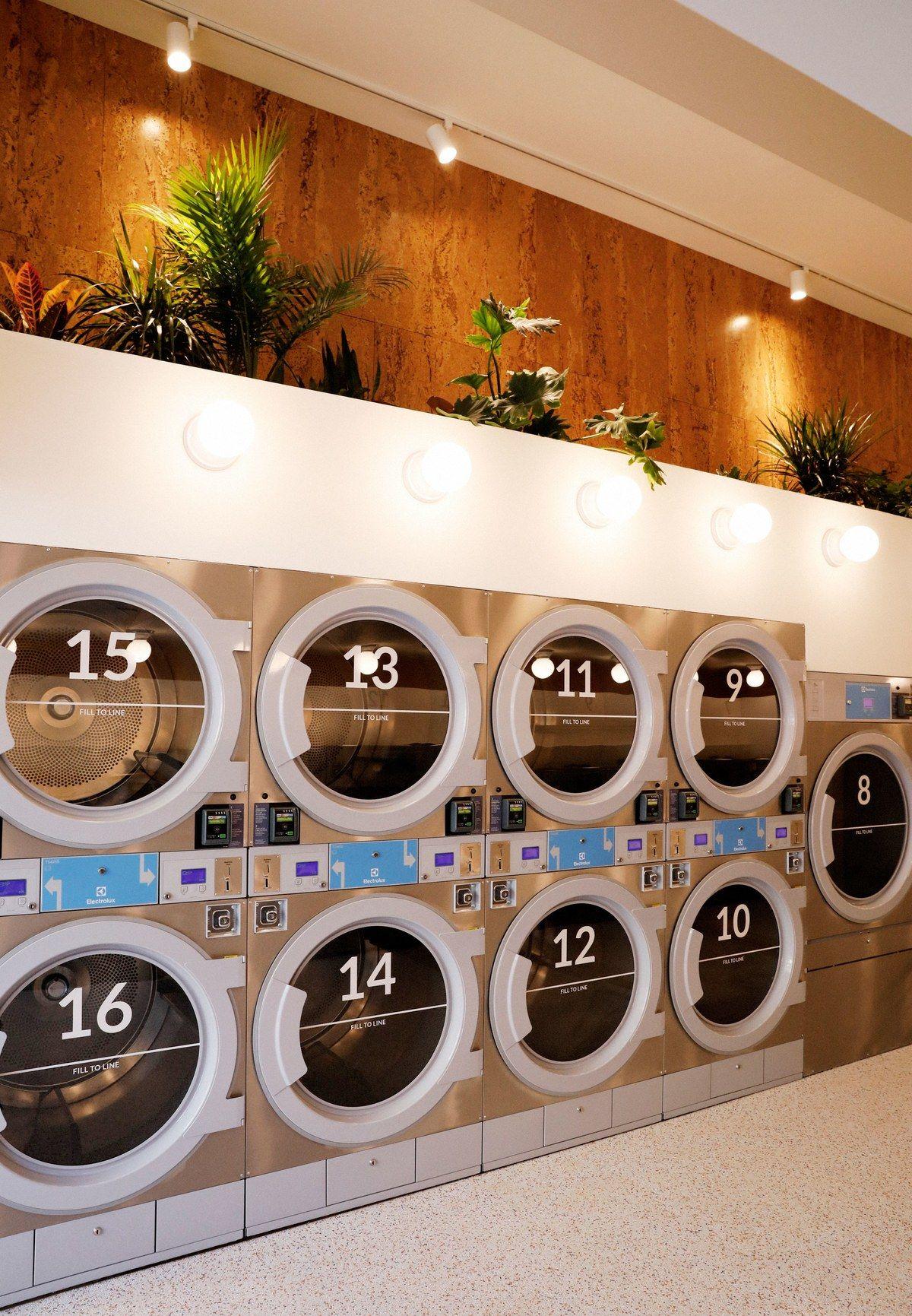 This Stylish New Laundromat Serves Craft Kombucha While