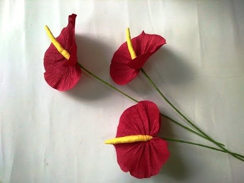 Diy How To Make Paper Flower Anthuriums Paper Flowers Paper