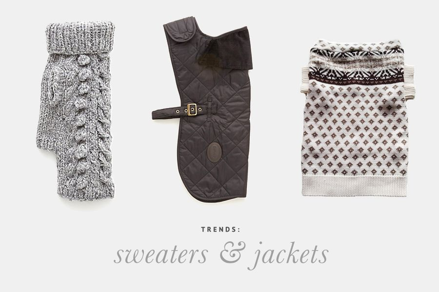12 Dog Sweaters & Jackets Your Dog will Love! - Pretty Fluffy - These dog sweaters and jackets are 'human grade fashionista' quality.