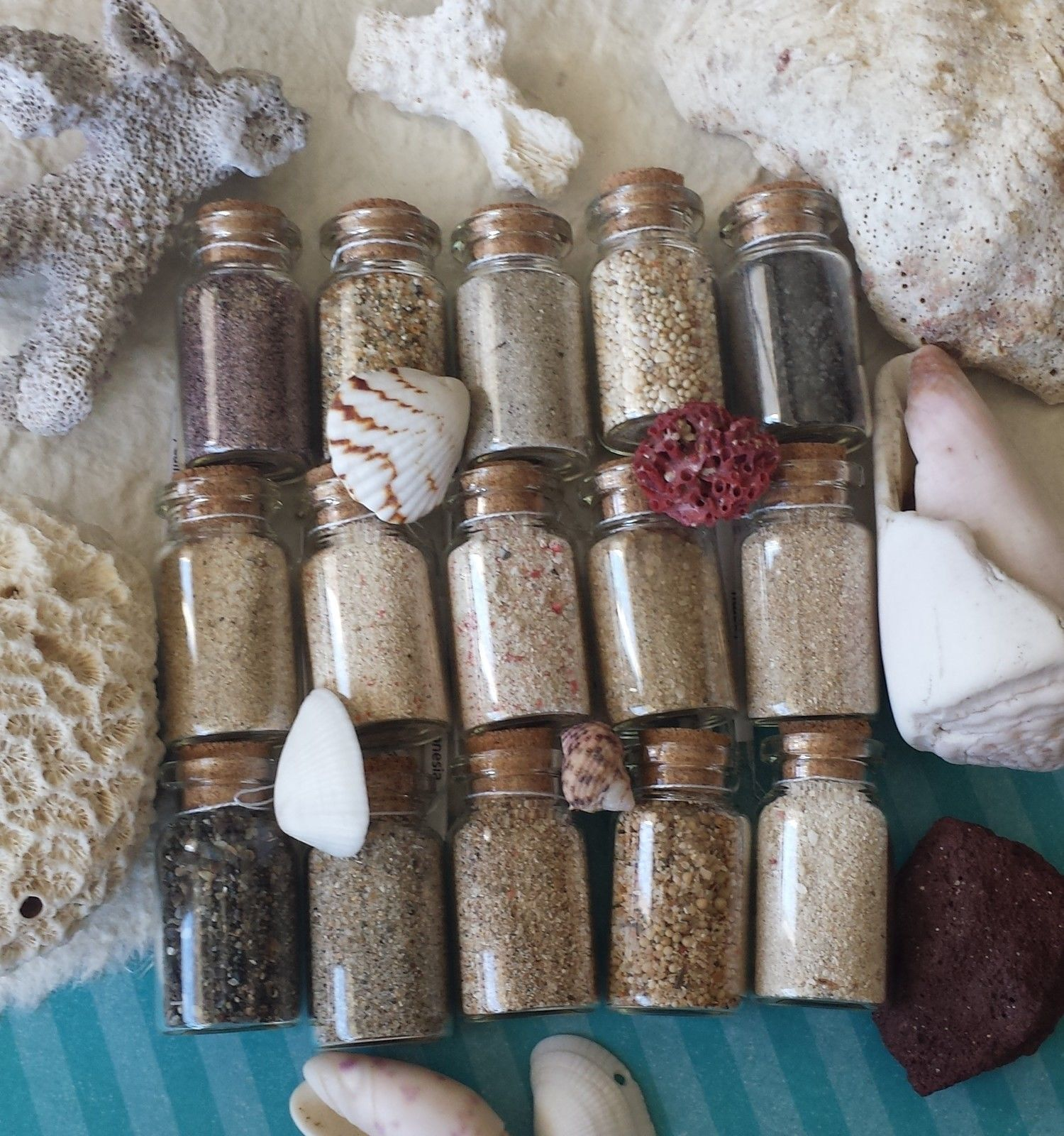 15 Beach Sand Collection Ebay Includes Angel Island Pink Carmel By The Sea Dreamland Komodo Maldives Paradise