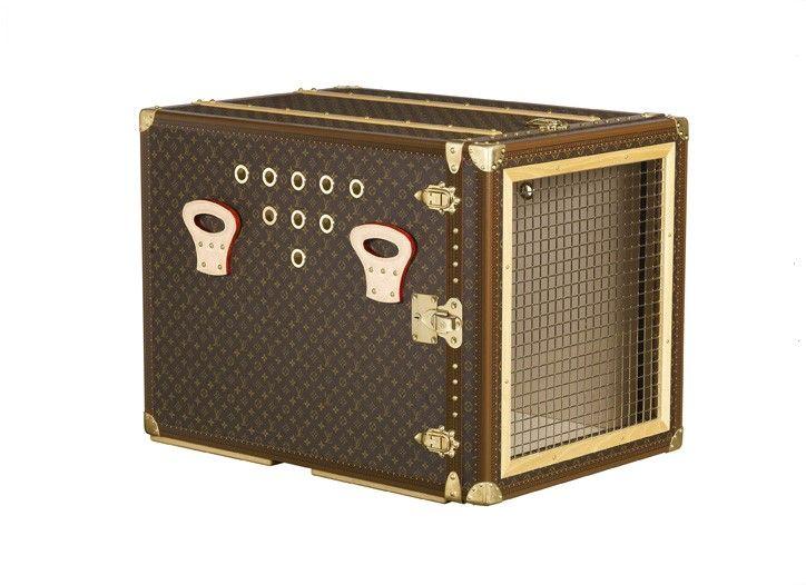 Louis Vuitton dog cage!   Pomsky   Pinterest