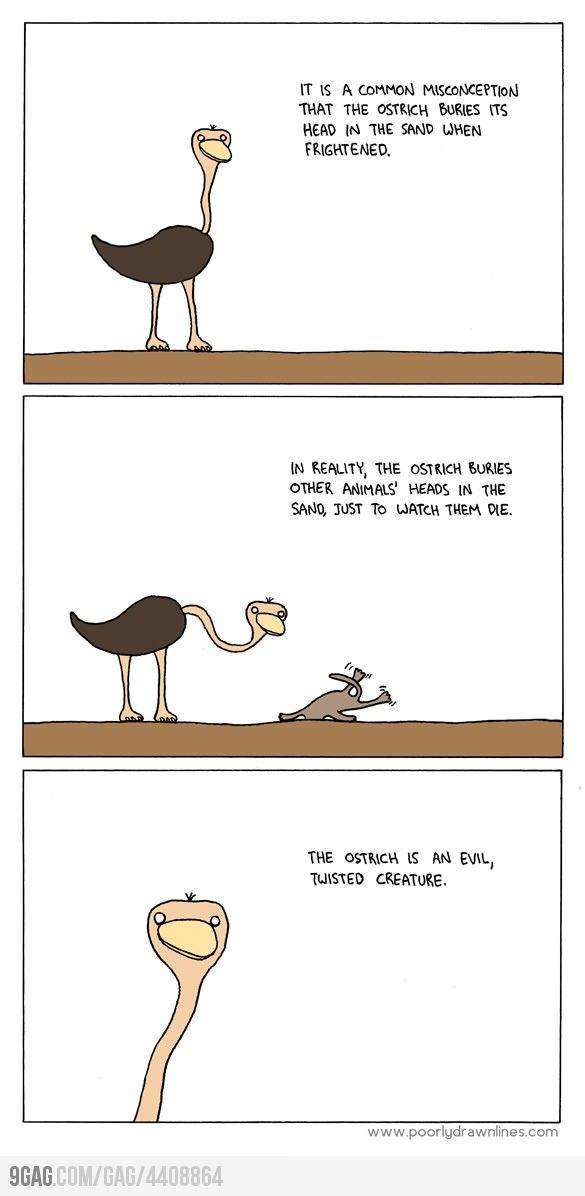 Evil Ostriches - photo#21