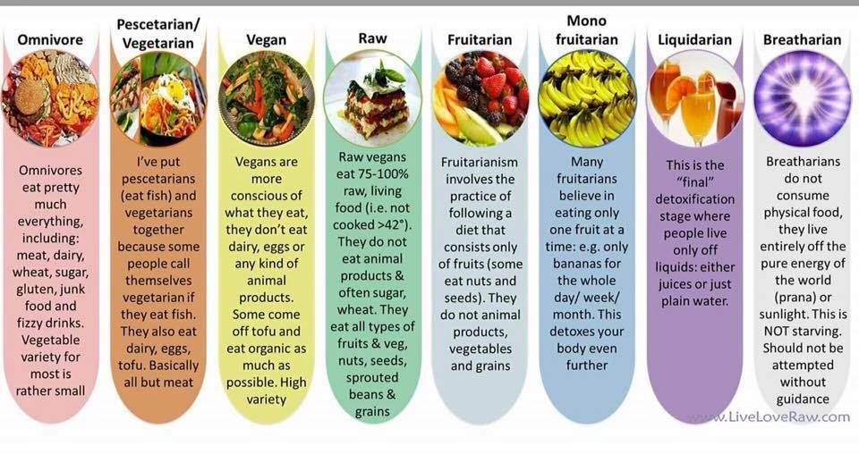 what makes the human diet different