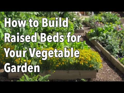 How To Build A Raised Garden Bed Planning Vegetable