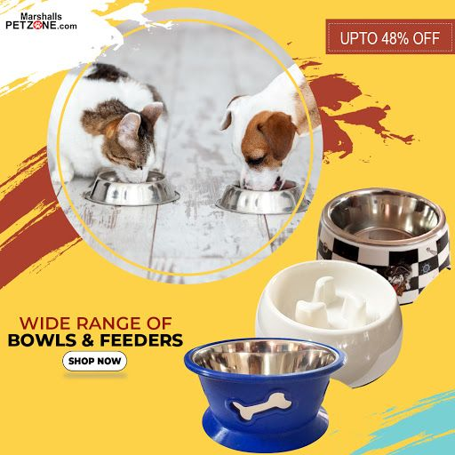 Save Upto 48 On Printed Vacuum And Anti Skid Bowls Feeders Give