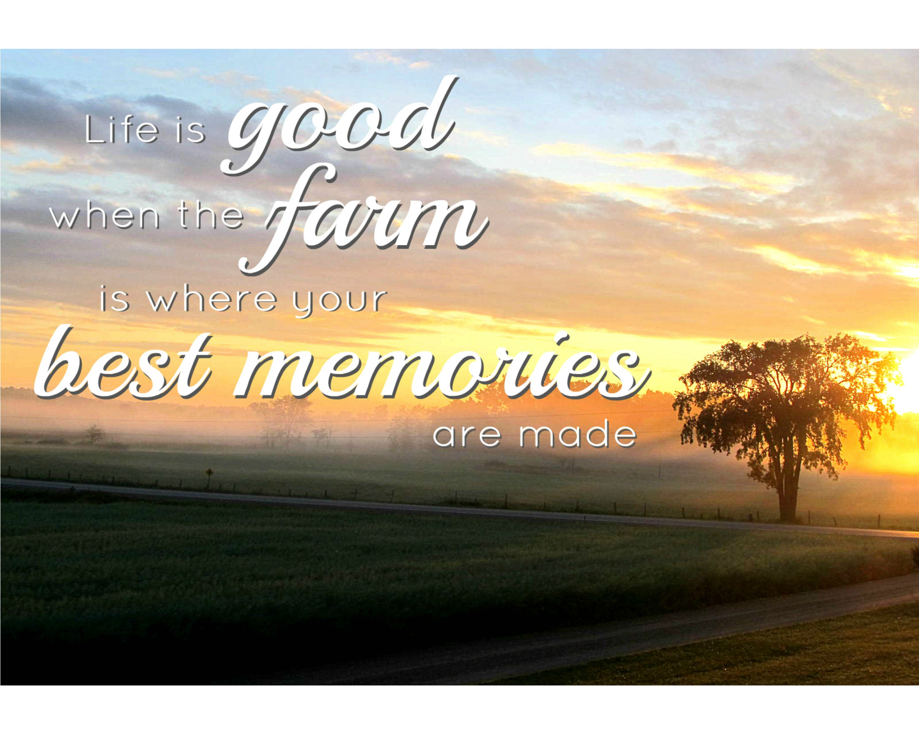 Farm Life Quotes Life Is Good When The Farm Is Where Your Best Memories Are Made