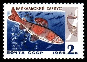 Soveit stamp with Lake Baikal Grayling.