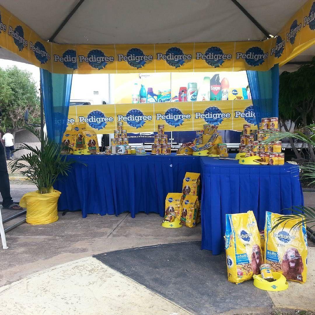 Ezee Pedigree Dog Food World Brands Services Dog Show