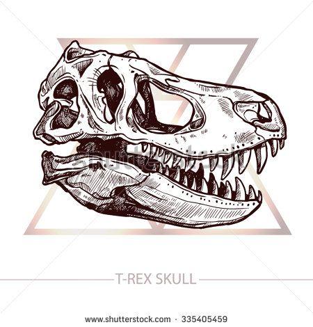 Skull Photos Et Images De Stock Skull Sketch Skull Drawing Animal Skull Drawing
