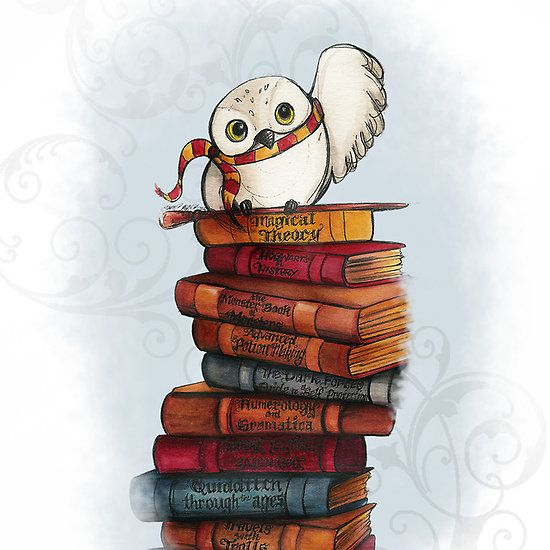 Harry Potter Wallpaper We Heart It: Hedwig I Just Died From The Adorableness