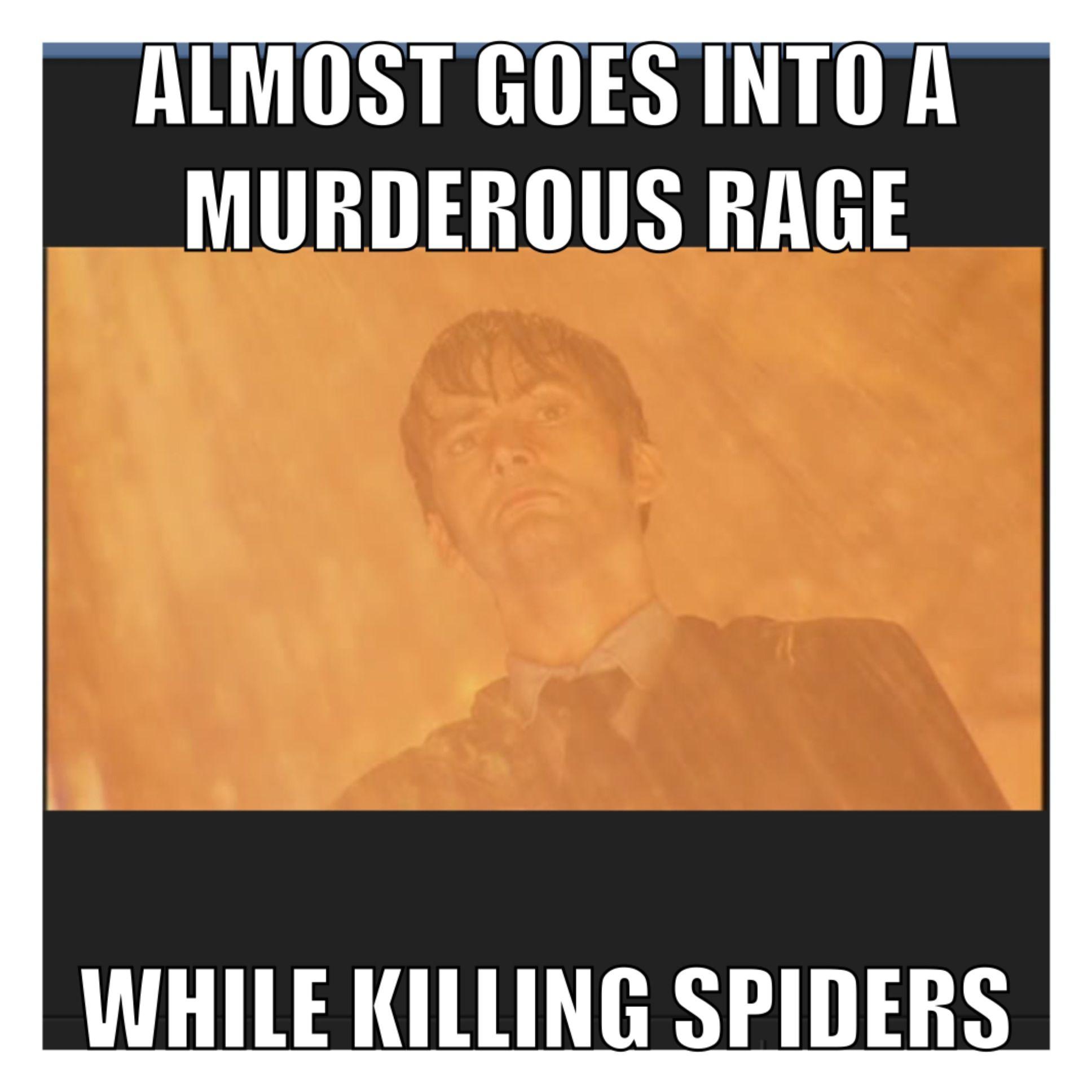 Doctor Who meme.