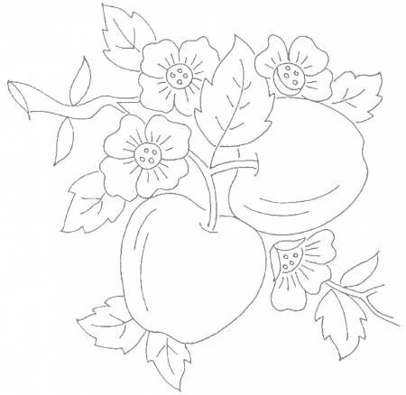 Apple Coloring Pages coloring.rocks! Embroidery hoop