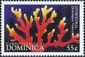 Stamp%3A%20Hydrocoral%20(Dominica)%20(Year%20of%20the%20Ocean)%20Mi%3ADM%202580%20%23colnect%20%23collection%20%23stamps