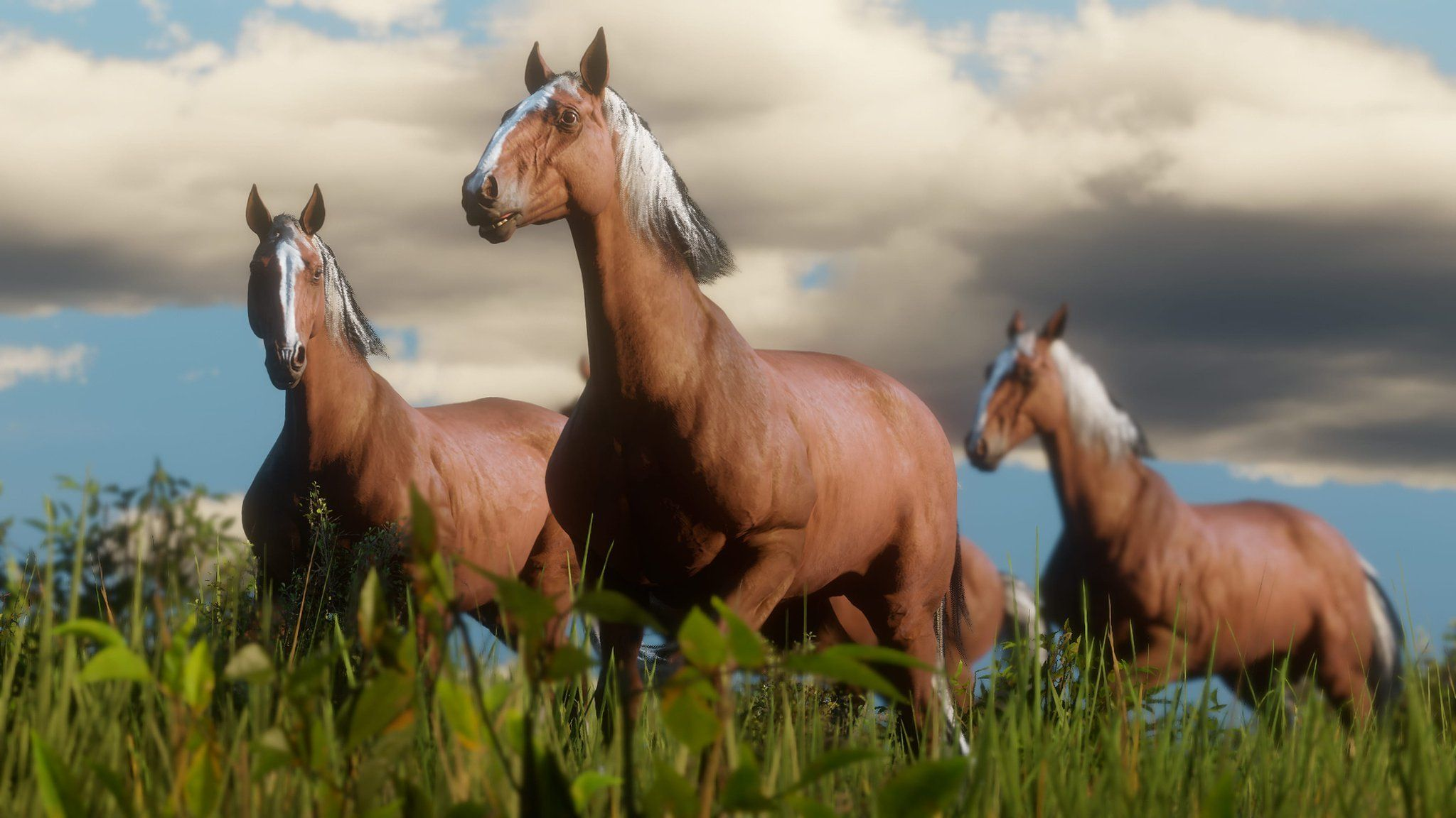 Arte Replay Mustang There Are 19 Breeds Of Horse In Red Dead Redemption 2 Latest New