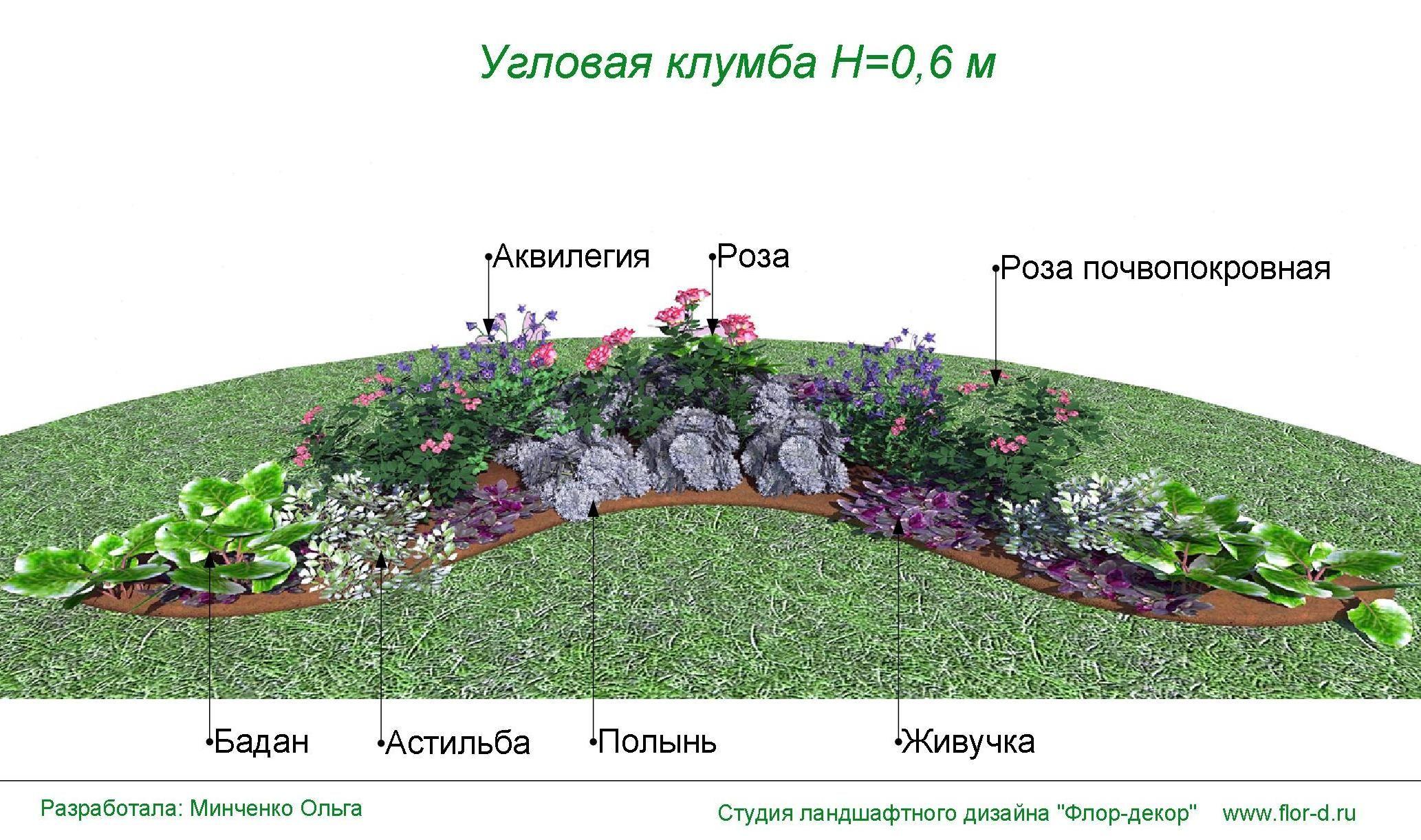 Схемы клумб фото с названиями