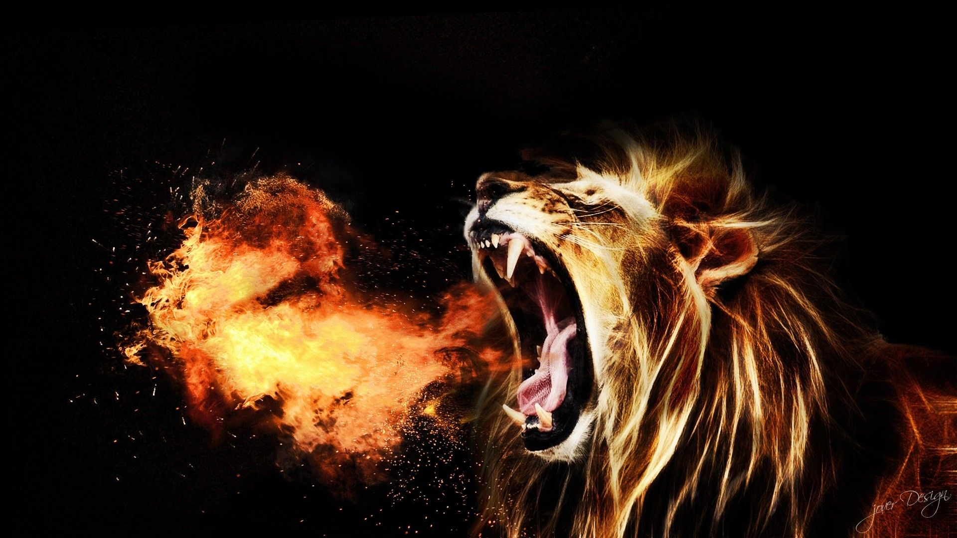 Best 25 Lion Hd Wallpaper Ideas On Pinterest: Lion Roar Free Download HD Wallpapers 3308