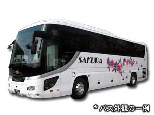 Express Bus Night Coach Bus Details Sakura Sightseeing 観光 バス 高速バス