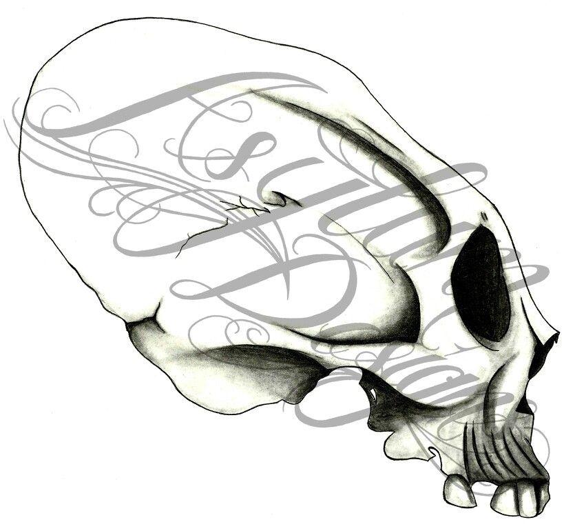 Historic skull #skulls