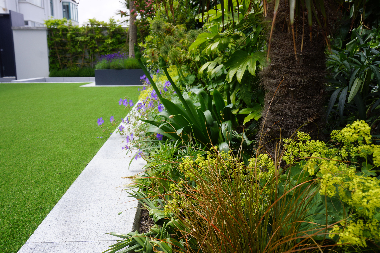 2014 July Sandycove Garden Garden Designer Agata Byrne Garden Design Coastal Gardens Garden