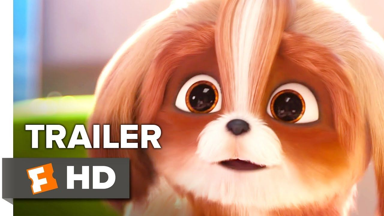 The Secret Life Of Pets 2 Trailer 2019 Daisy Movieclips Trailers Youtube Secret Life Of Pets Pets Dog Pet Beds