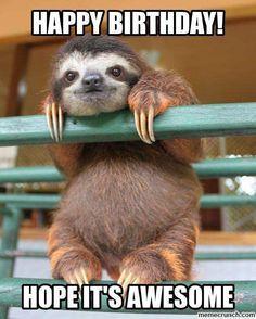 Birthday Sloth Happy Birthday Meme Happy Animals Sloth Happy