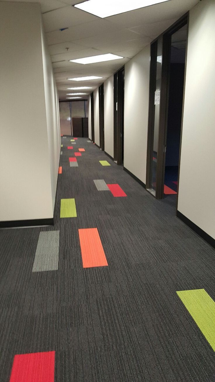 Carpet Trends for Modern Commercial Spaces image by Newman