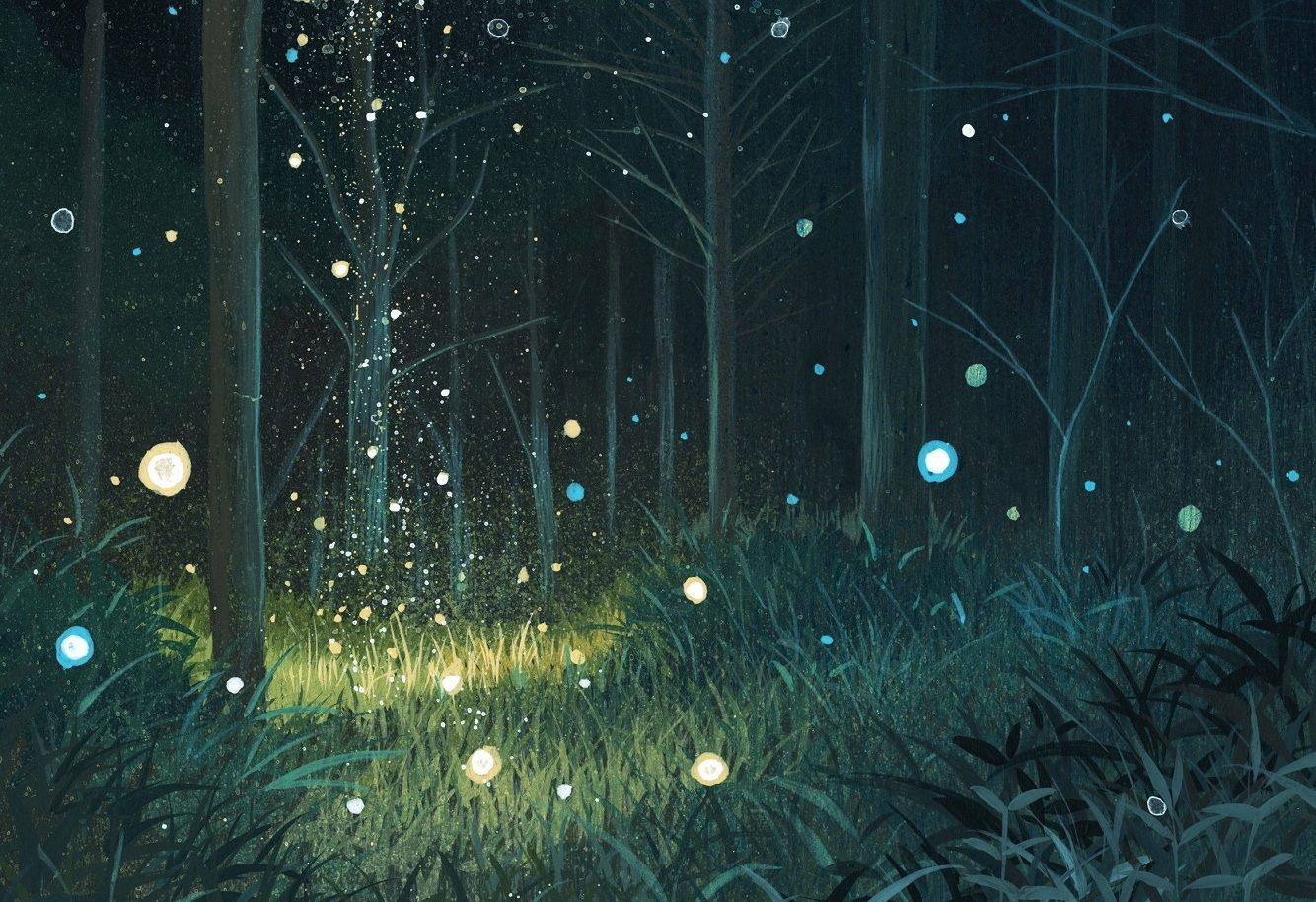 45 Night Time Forest Wallpapers Download At Wallpaperbro Night Forest Forest Wallpaper Night Landscape