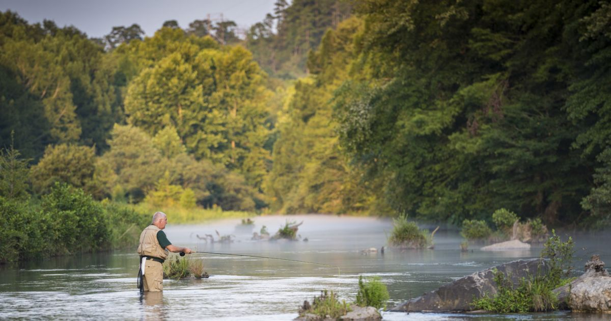 Beaversbend In Southeastern Oklahoma Never Disappoints Flyfishing For Trout On Mountainforkriver Or Bass Lake Fishing Fly Fishing Fly Fishing Flies Trout