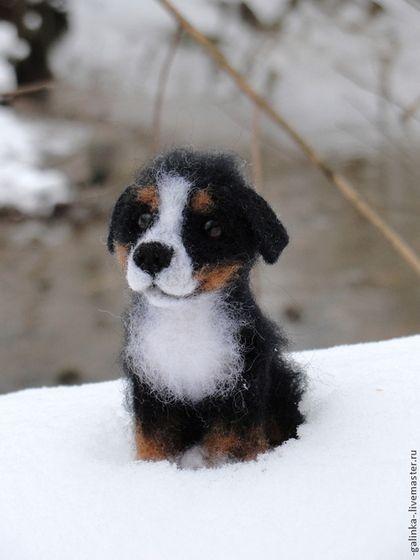 Щенок бернского зенненхунда - черный,белый,рыжий,собака,войлочная собачка