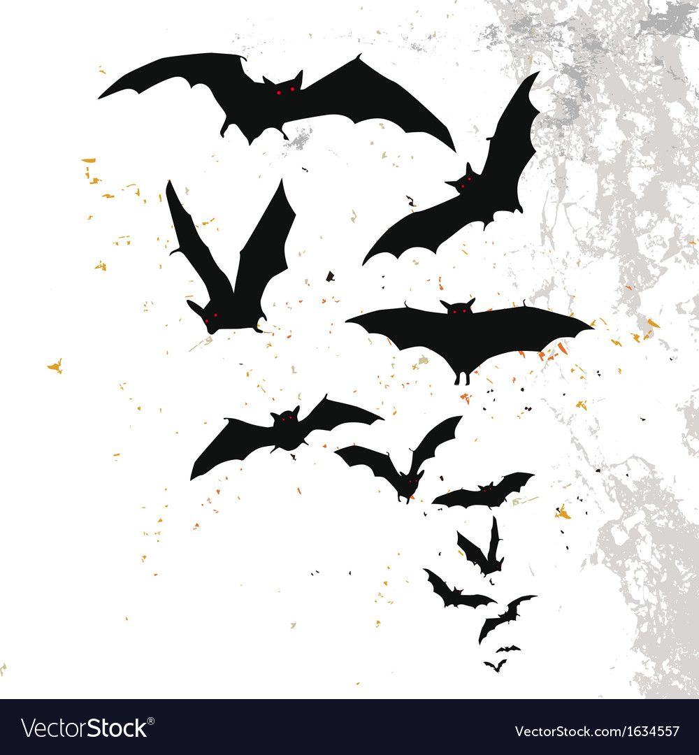 Halloween Background With Flying Bats Royalty Free Vector Spon Flying Background Halloween Bats Ad Bat Vector Halloween Backgrounds Illustration