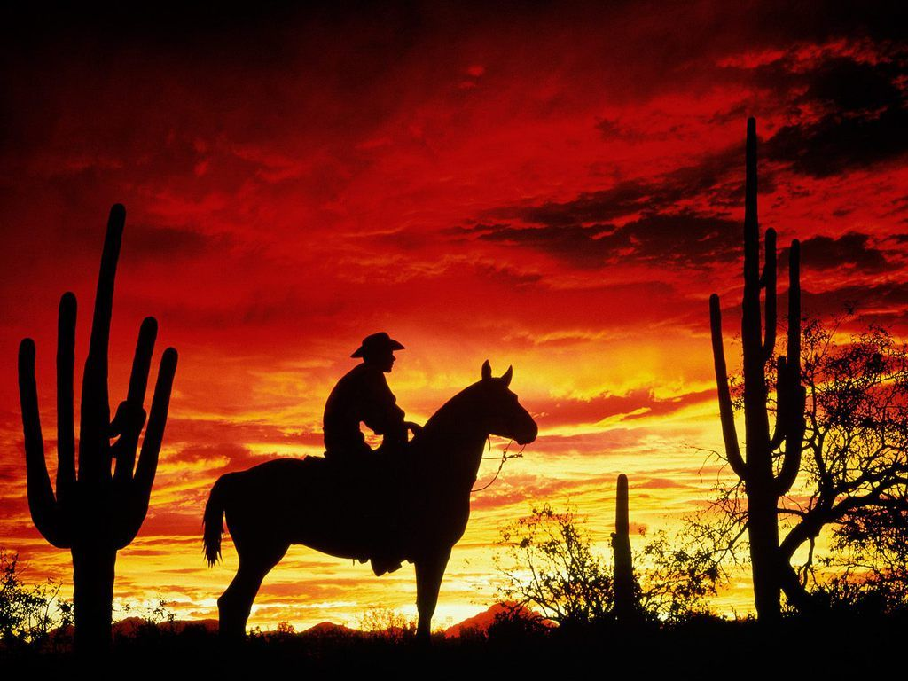 Silhouette Cowboy In The Sunset Horse Silhouette Horse Wallpaper Cowboy Pictures