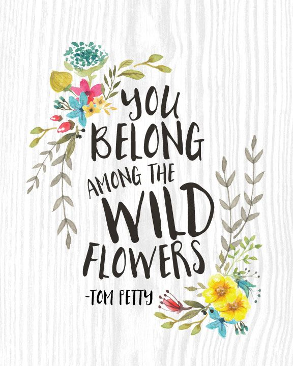 You Belong Among The Wildflowers Google Search Flower Quotes