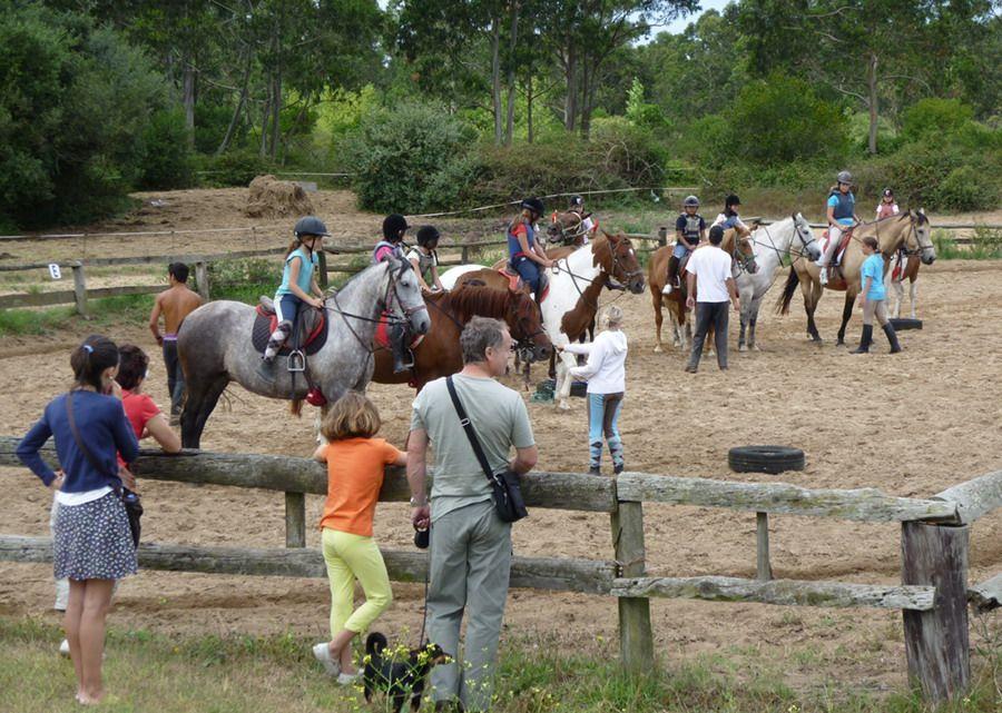 Casas Rurales En Cantabria Con Actividades Para Niños Actividades Para Niños Casas Rurales Actividades