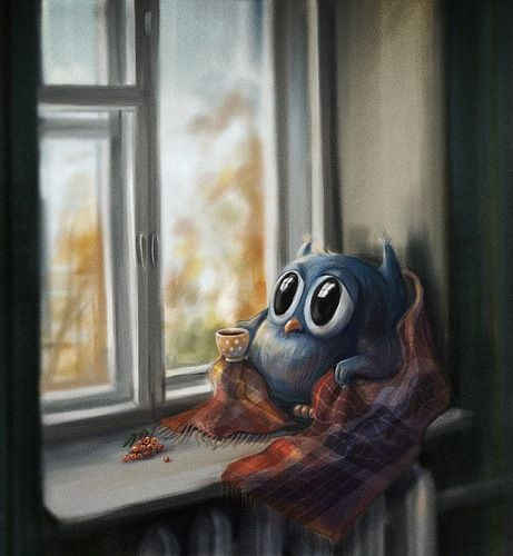 Owl on the sill
