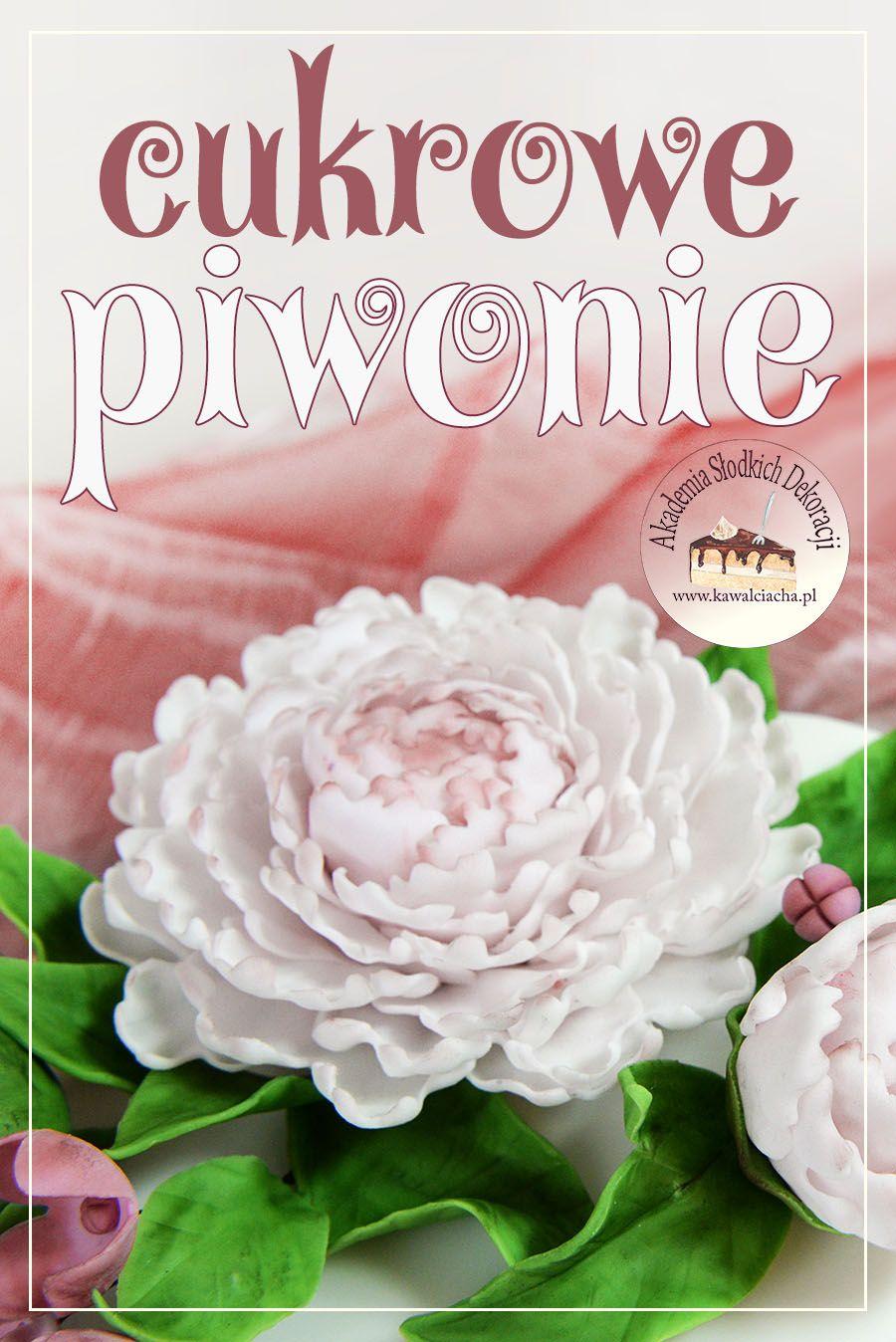 Piwonie Z Masy Cukrowej Kawal Ciacha Akademia Slodkich Dekoracji Rose Flowers Plants