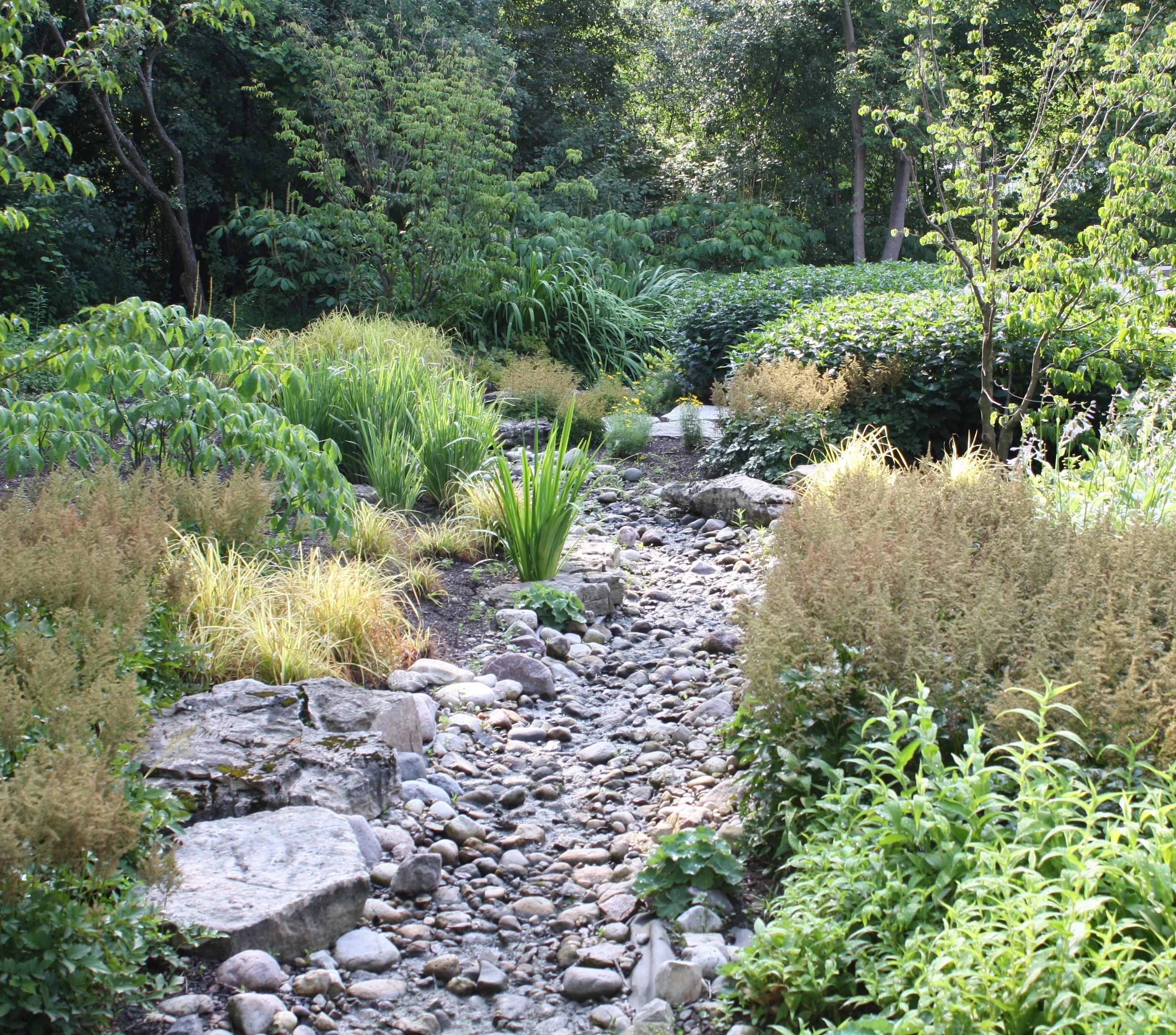 dry creek beds turn running