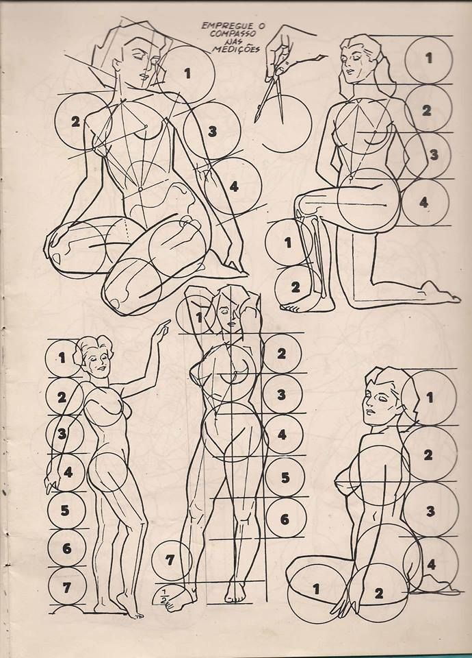 Pin de Maurizio en drawing the human body | Pinterest | Anatomía ...