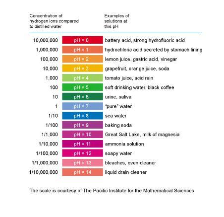 Dental Problems and Acidic Foods Dental Tips Pinterest - ph chart